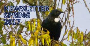 Glenview Spring Newsletter 2017